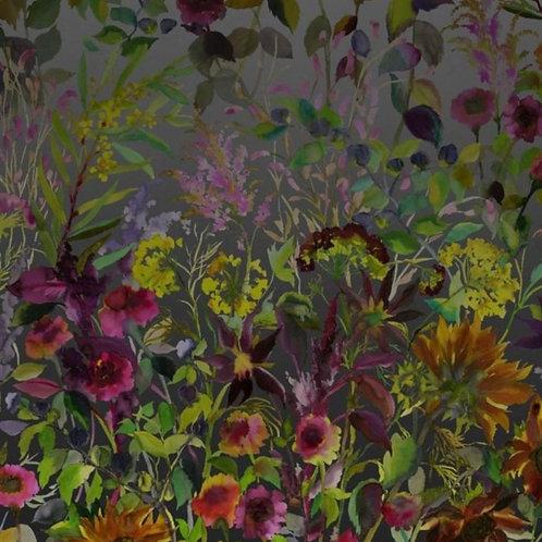 Indian Sunflower Wallpaper