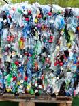 plastic-bottles-115069_960_720.jpg