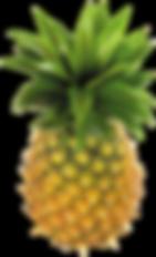 purepng.com-pineapplepineappleananas-com