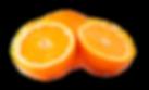 orange-png-orange-png-image-1731.png