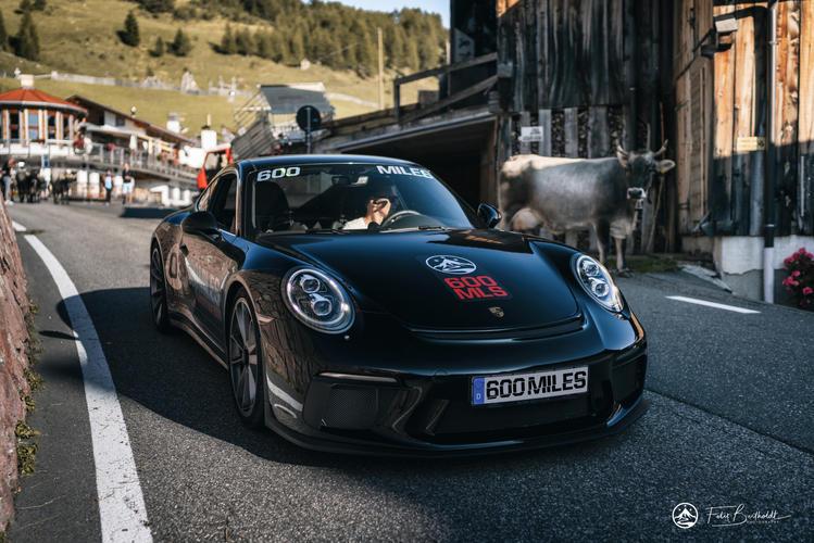 Porsche GT3 Touring und sein tierischer Begleiter