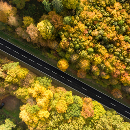 Impressionen Thüringer Wald