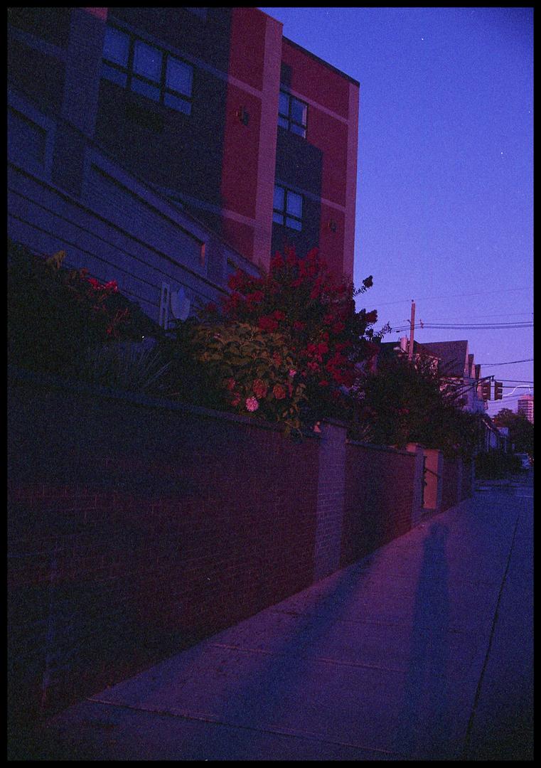 Expired Film
