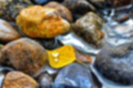 IMG_3337 _Snapseed.jpg