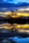 IMG_4803 _Snapseed 2.jpg