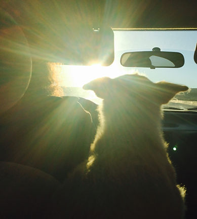Gordo and his dog on tour