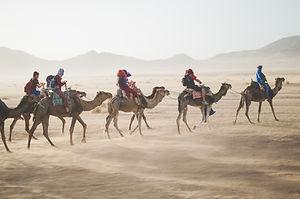 Desert Safari Camel Tour