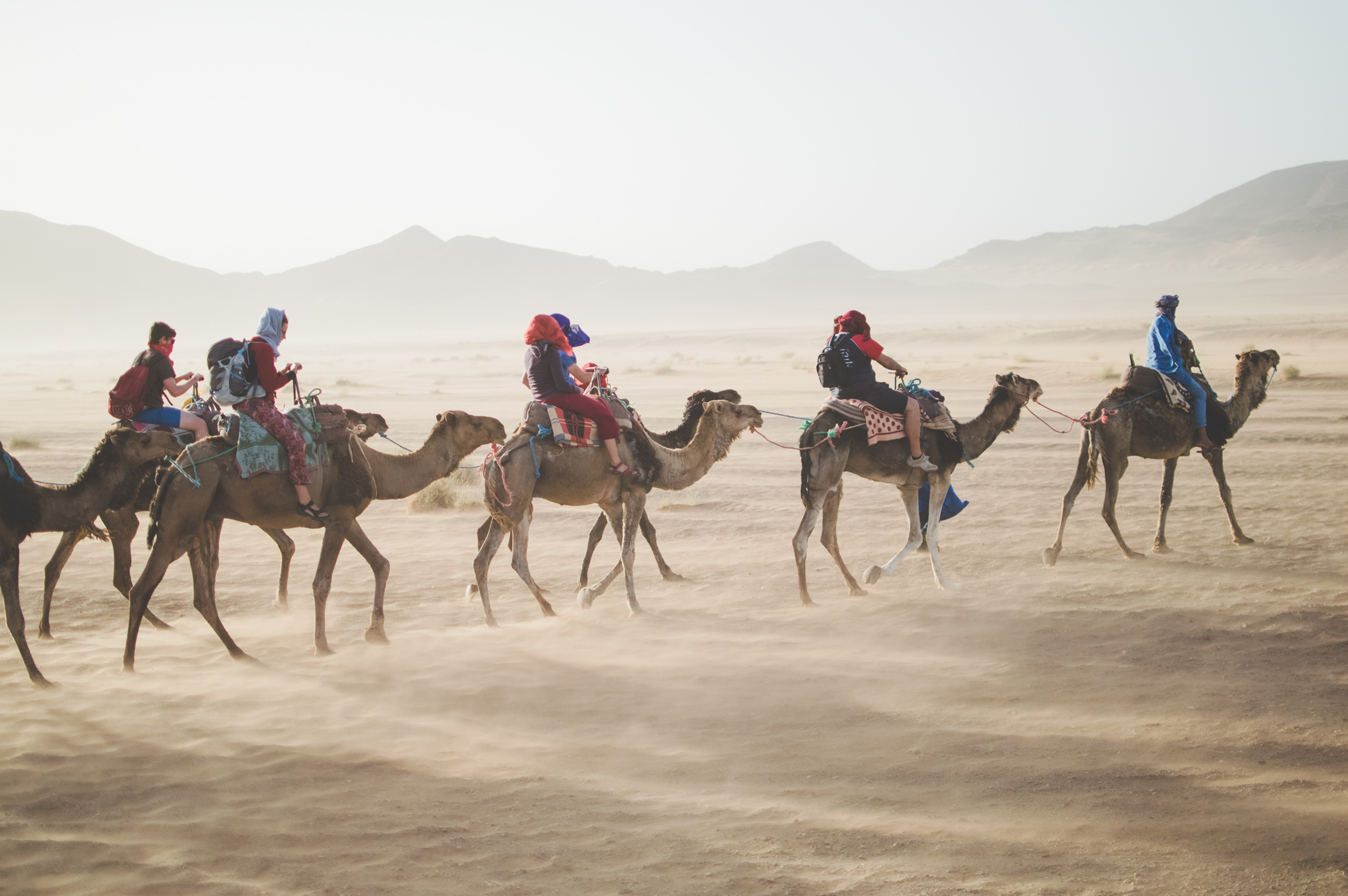 Family Travel Consultation
