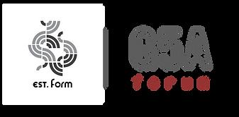 G5A x EstForm Logo Lockup.png