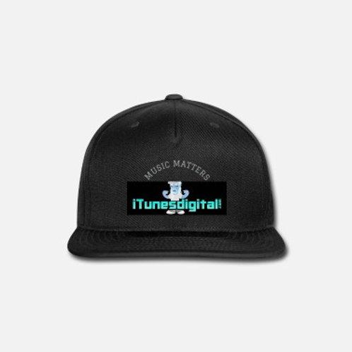 Music Matters Hat