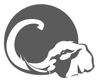 Cogent Elephant Only jpg.jpg