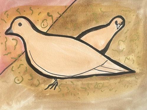 Flirty Mourning Doves