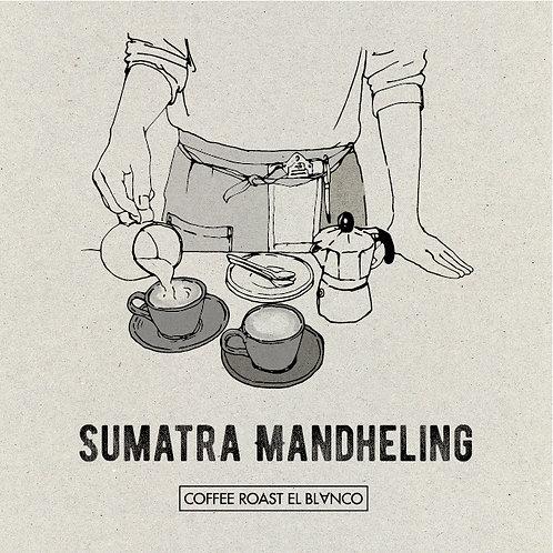 スマトラマンデリンG-1 [ インドネシア産 ]