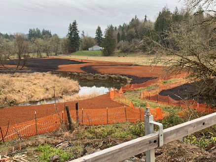 LACAMAS CREEK MITIGATION