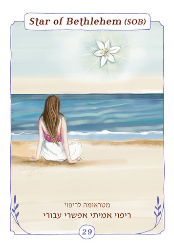 Pages from באך-8_Page_5.jpg