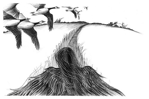 אווזים - מוציאה לאור