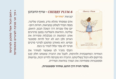 Pages from 4באך-חוברת_Page_4.jpg