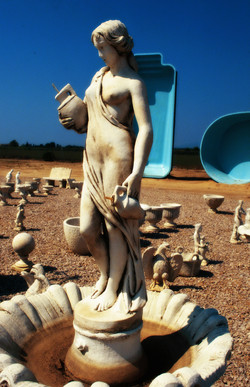 Venus and pool