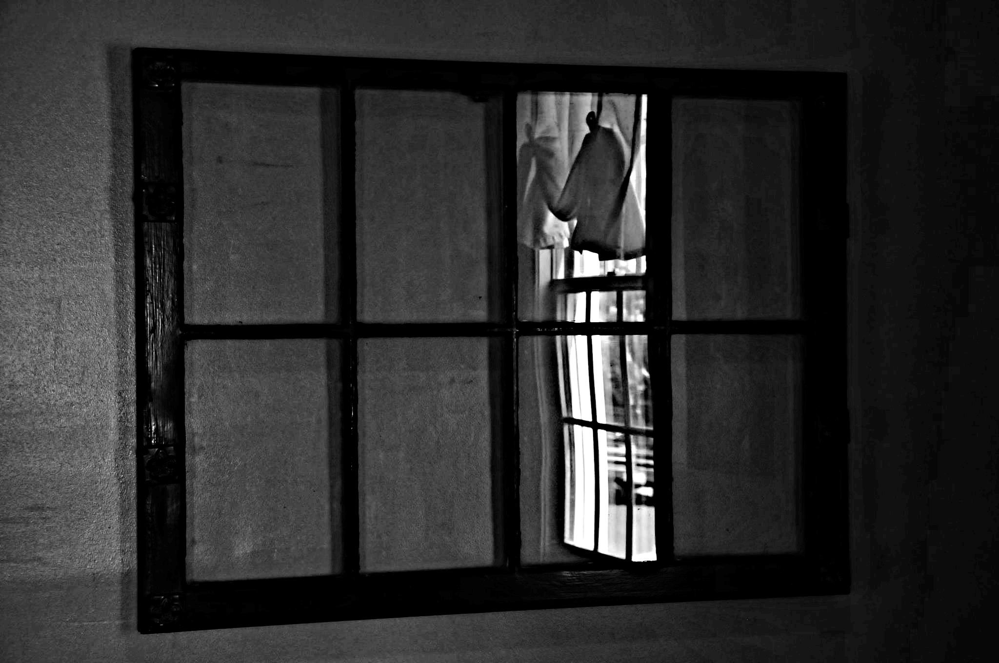 Leesburg window
