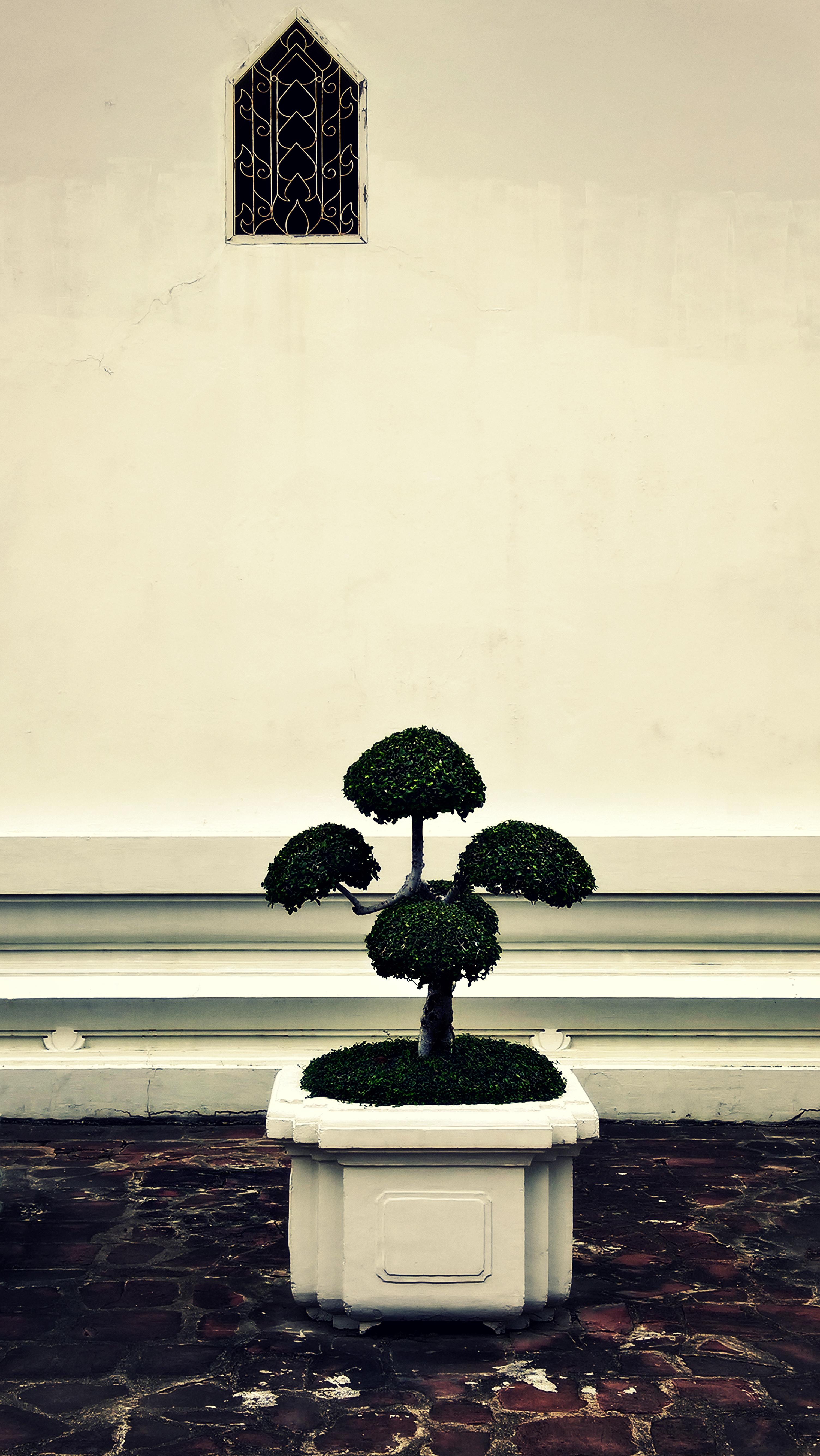 Temple planter