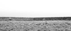 Steinmauer, Mull of Galloway ©Johannes Ratermann