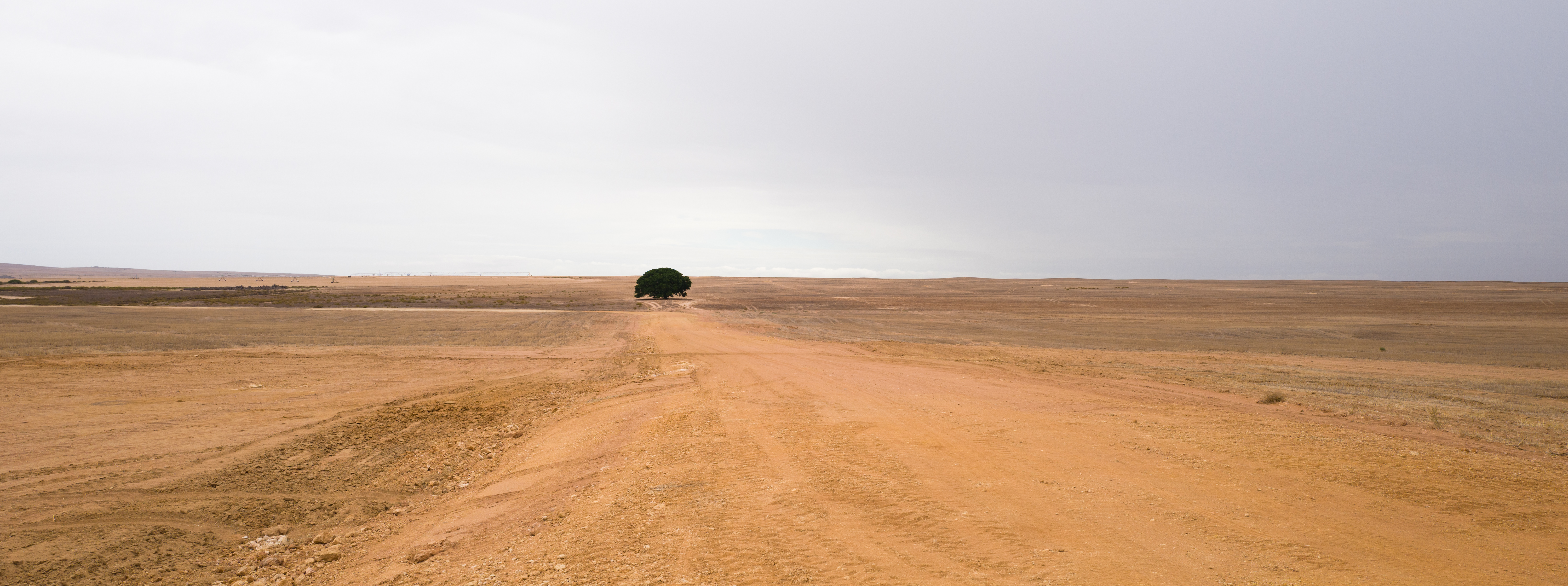 Auf dem Weg nach Bushmans Kloof, ZA -100