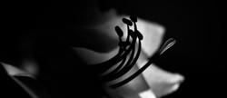 Amaryllis ©Johannes Ratermann
