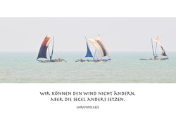 Wir können den Wind nicht aendern. ©Johannes Ratermann