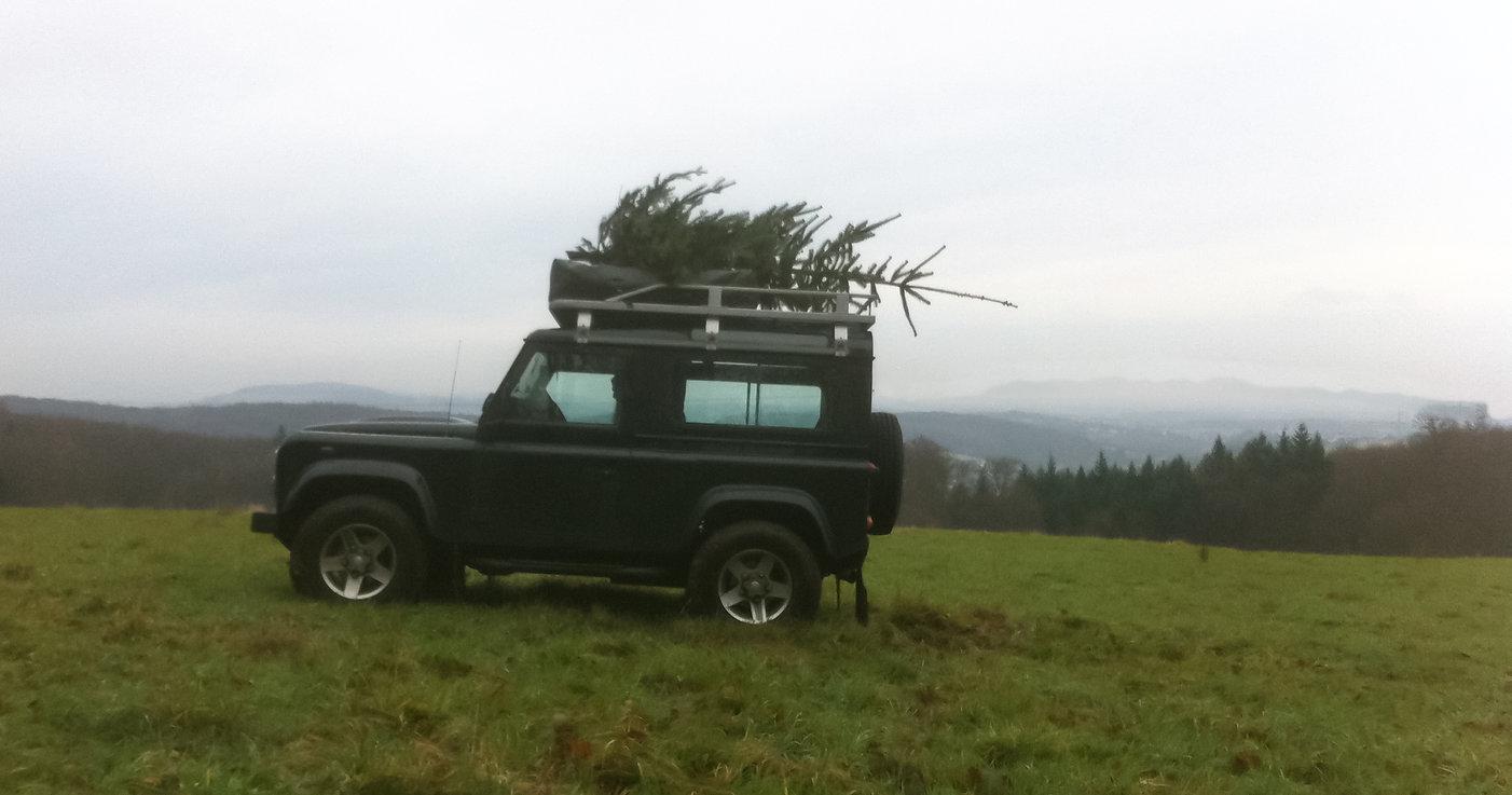 Defender mit Tannenbaum auf der Schwanenwiese ©Johannes Ratermann