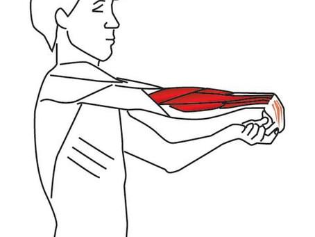 Tennis Elbow (Wrist Extensor) Stretch