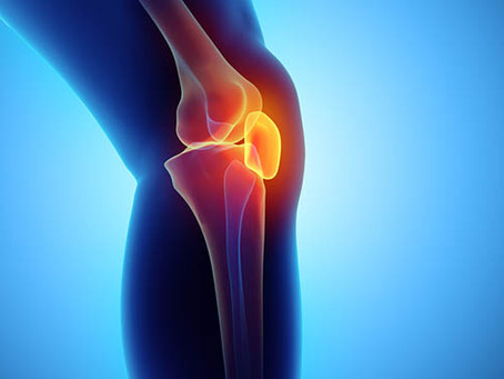 What's In Your Knee?