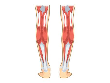 Gastrocnemius and Soleus Stretch (Calf)