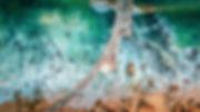 DJI_0116-Edit.jpg
