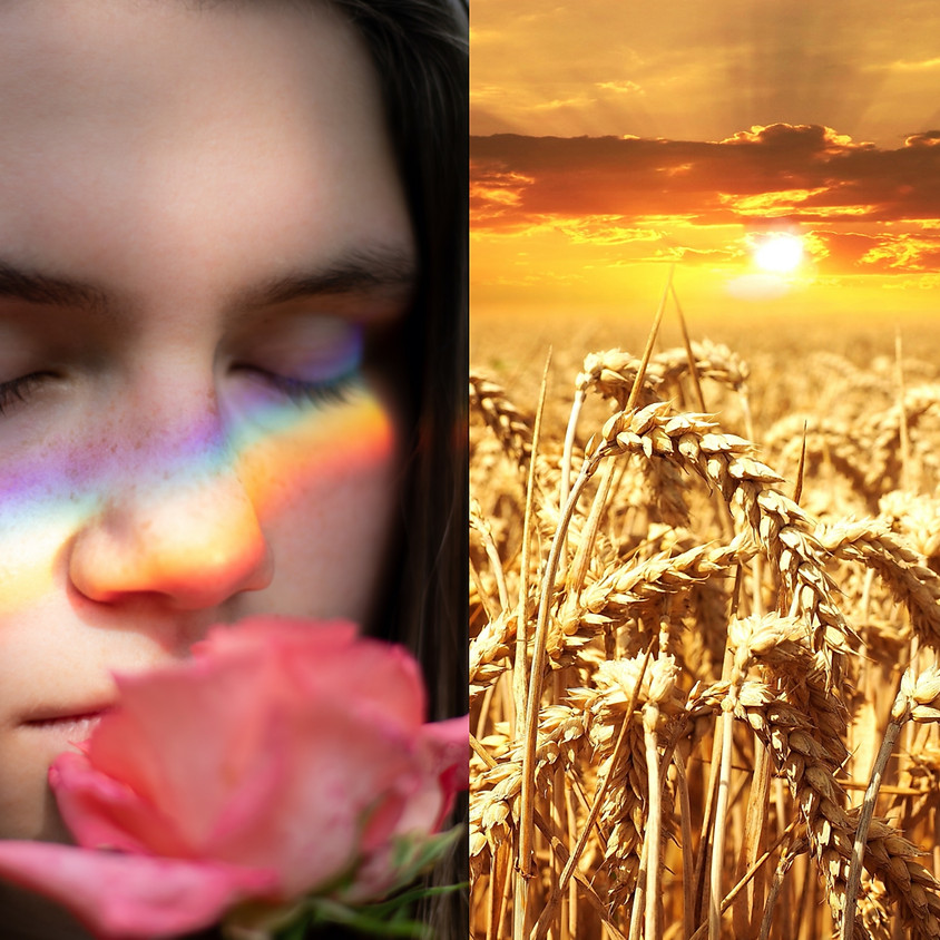 Female Rainbow Workshop: The Demeter Archetype