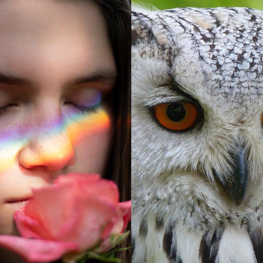 Female Rainbow Workshop: The Athena Archetype