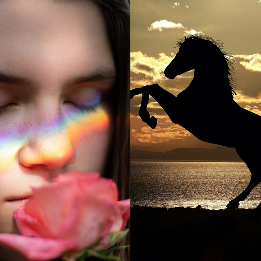 Female Rainbow Workshop: The Artemis Archetype