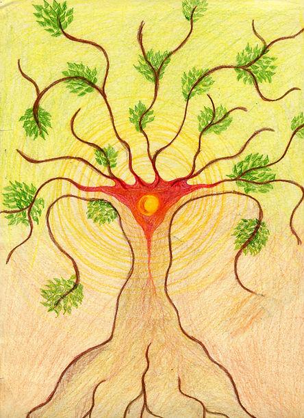 'Tree Woman': The feminine principles of Authentic Movement.