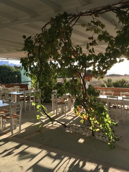 The dinning space at Okreblue
