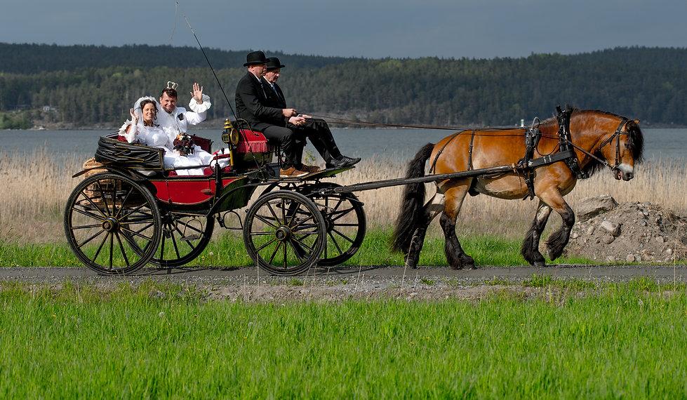 Rokoko Bröllop 2019, Fotograf KGZ Fougstedt