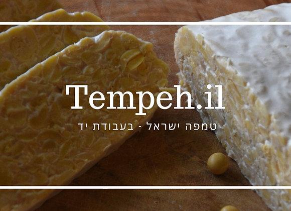 טמפה ישראל מפולי סויה