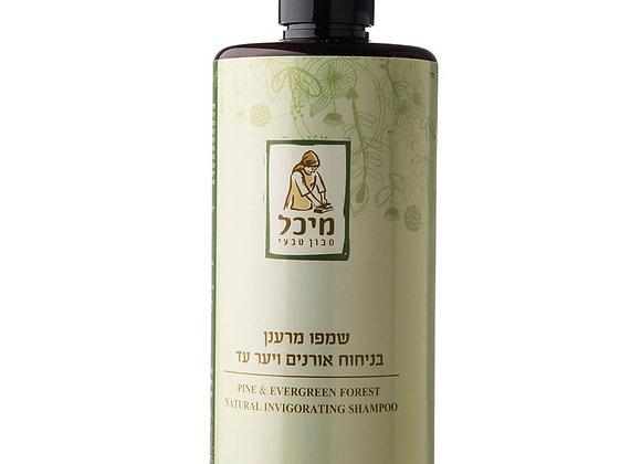 מיכל סבון טבעי- שמפו טבעי מרענן בניחוח אורנים, ליסטאה, לבנדר וברוש