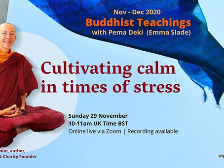Cultivating Calmness in Times Of Stress - December 6th