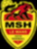 Logo MSH couleur.png