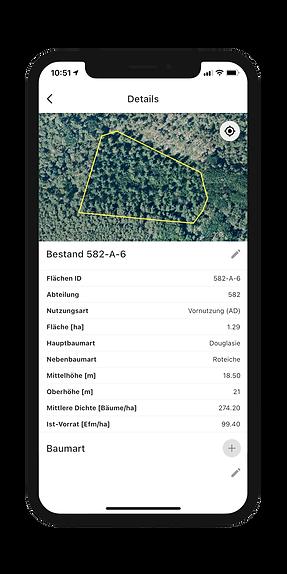 Bestandsinformationen mobil & offline einsehen in der Dynamic Forest-App von OCELL