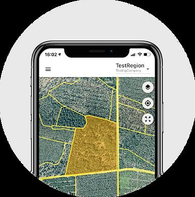 Dynamic Forest App von OCELL
