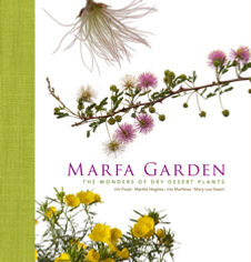 Marfa_Garden.jpg