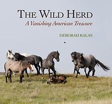 Wild Herd.jpg