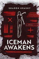 Iceman-Awakens.jpg