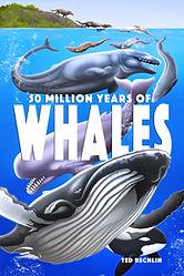 50-Million-Years-of-Whales.jpg