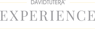 DT_Experience_Logo_Website_Gray_Yellow-1